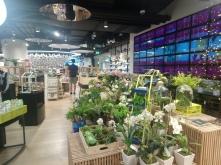 Bangkok - Siam Discovery shopping centre
