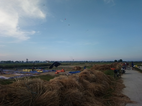 Kite flying over the rice paddies