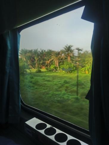 Night train views
