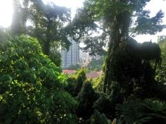 Kuala Lumpur ecopark /city jungle
